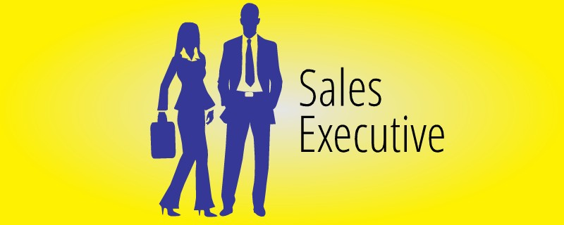 Career Opportunity Sales Executive Autosys Technologies